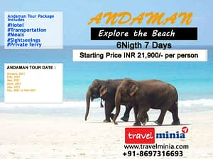 3 Best Andaman Tour Packages just at ₹3,000 (Budget & Luxury)